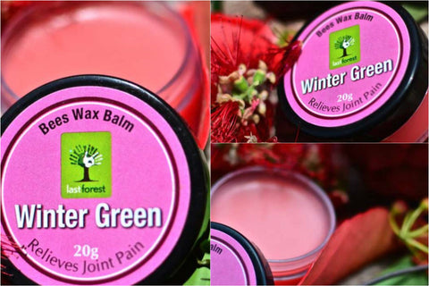 Last Forest - Winter Green Bees Wax Balm