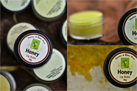 Last Forest - Honey Bees Wax Lip Balm