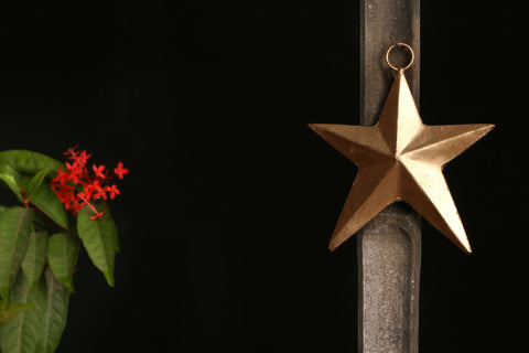 Copper Coated Star Art -Star (5.5 inches)