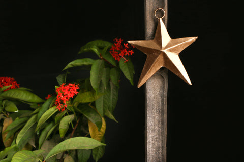 Copper Coated Star Art -Star (4.5 inches)