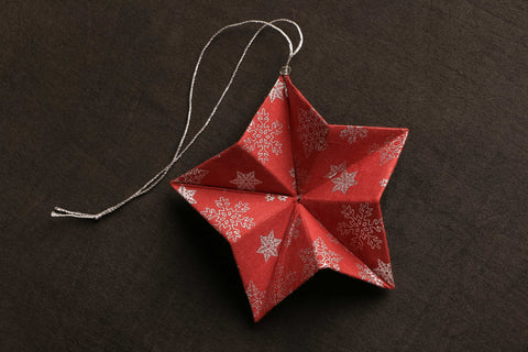 Blue Mango - Paper Star Accordion Hanging