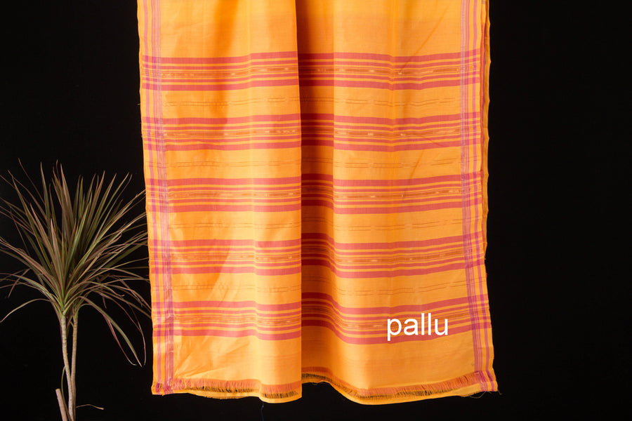 Mangalgiri Godavari Cotton Handloom Saree with Blouse by DAMA