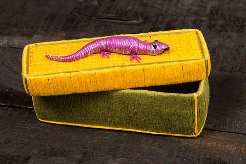 Handmade Coir Pen-Pencil Box - Lizard