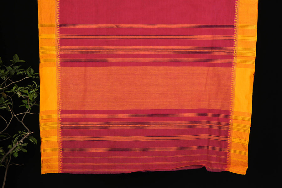 Begumpuri Handwoven Cotton Saree from Bengal