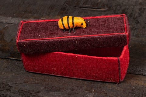 Handmade Coir Pen-Pencil Box - Ant