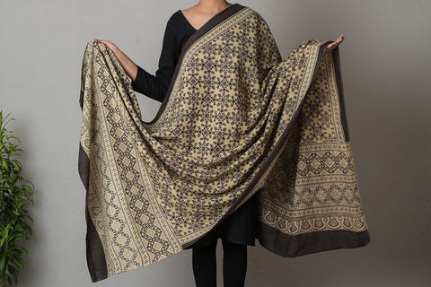 Chaar Kaam Ajrakh Print Natural Dyed Soft Cotton Dupatta from Kutch