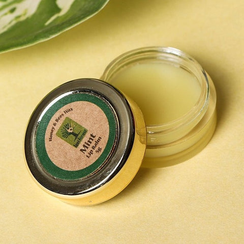 Last Forest Mint Beeswax Lip Balm - 5 gm
