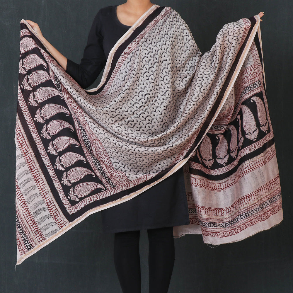Bagh Hand Block Print Natural Dyed Chanderi Silk Dupatta