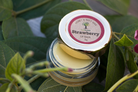 Last Forest Strawberry Beewax Lip Balm - 5 gm
