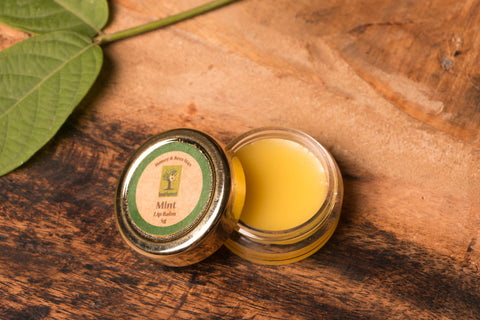 Mint - Bee Wax Lip Balm by Last Forest (5 gm)