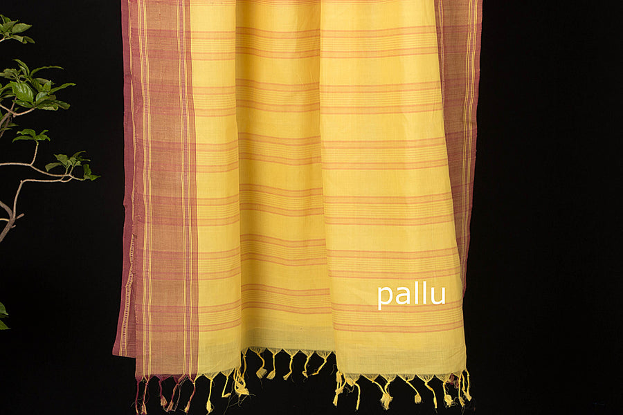 Godavari Petu Cotton Saree with Blouse by DAMA