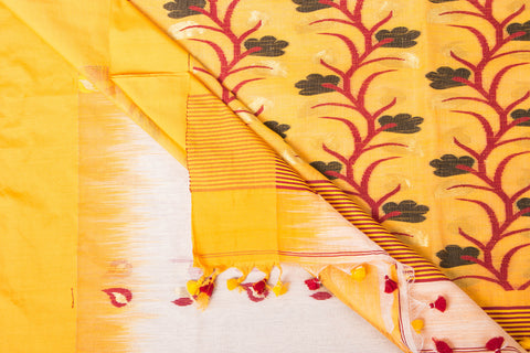 Handloom Silk Cotton Jamdani Weave Saree from Nadia