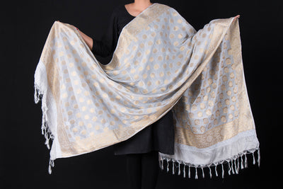 Lucknow Chikankari Hand Embroidered Silk Cotton Dupatta with Zari Work