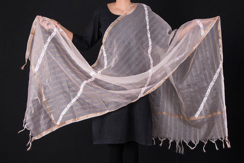 Lucknow Chikankari Hand Embroidered Organza Silk Cotton Zari Dupatta