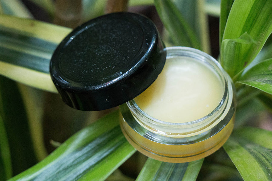 Papaya - Natural Handmade Lip Balm 8 gms
