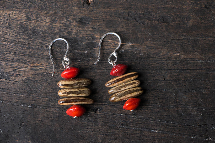 Handmade Natural Seeds Earrings