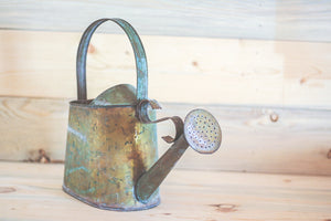 Copper Watering Can