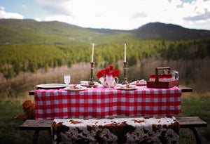 Red and White Checked Tablecloth