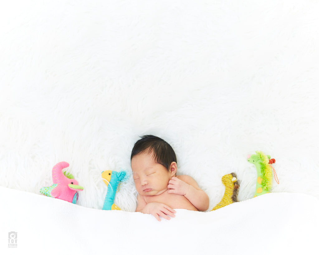 Newborn Session with two backgrounds