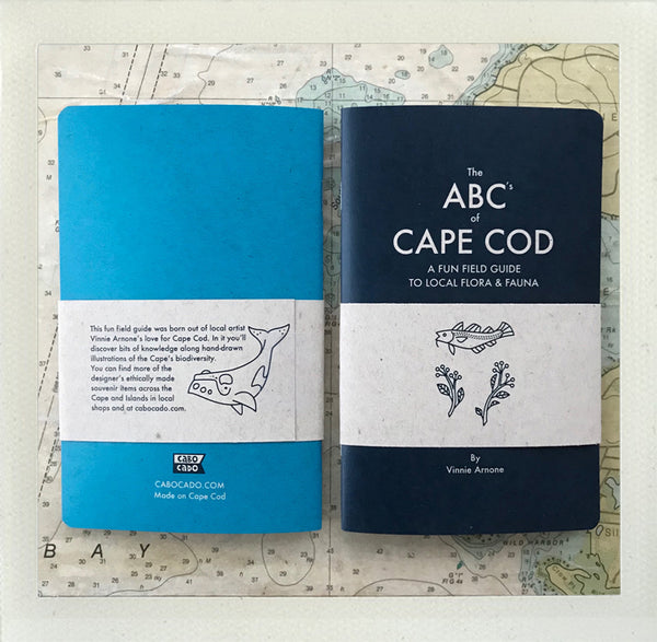 The ABC's of Cape Cod - 2