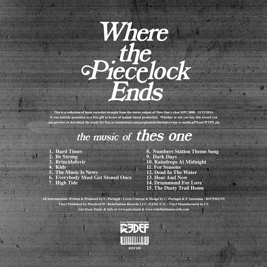 Thes One (of P U T S ) - Where The Piecelock Ends (12