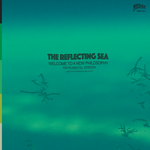 Damu The Fudgemunk - Instrumentals from The Reflecting Sea (LP - Blue / Green Vinyl)