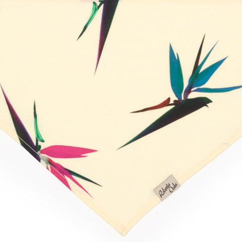 Pet Bird of Paradise Pale Yellow - M & L ONLY