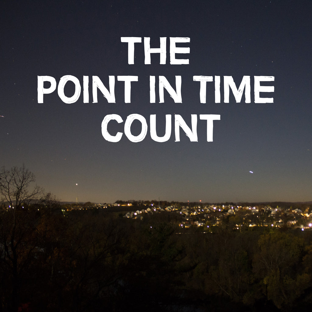 Point In Time Count