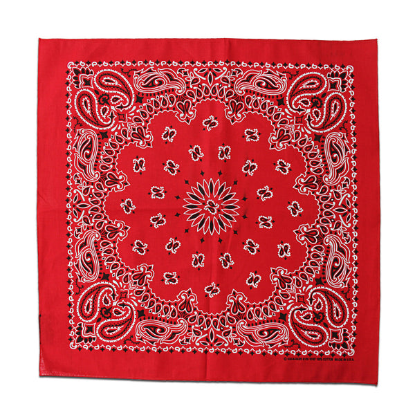 Red Paisley Bandana