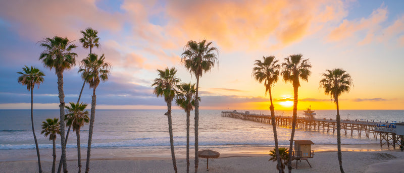sunset and palm trees over the pacific ocean in California Landscape photography.