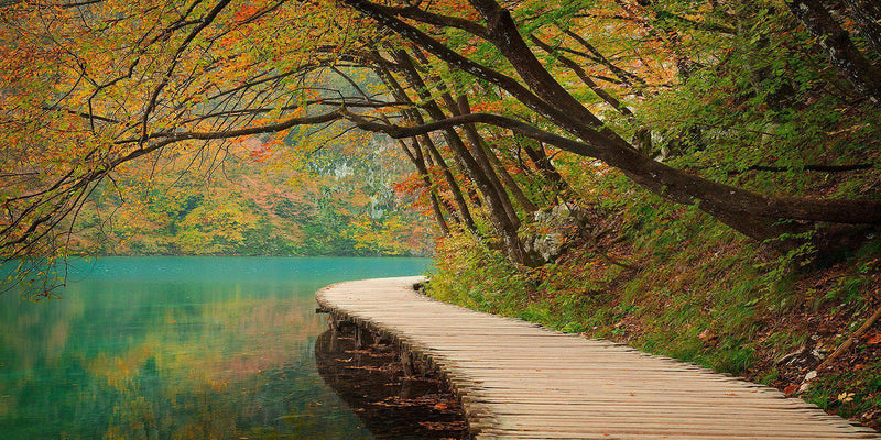 A boardwalk along a lake in Plitvice National Park, Croatia. By Lijah Hanley.