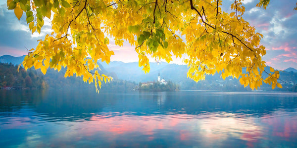 Autumn color at Lake Bled in Slovenia. By Lijah Hanley.