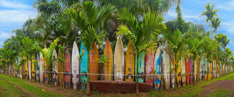 Hawaiian Landscape photography by Lijah Hanley. A colorful surfboard fence lines a property on Maui, Hawaii.