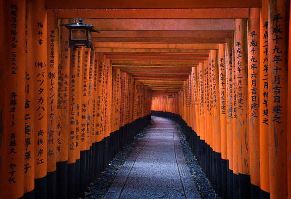 The Fushimi Inari temple in Kyoto Japan