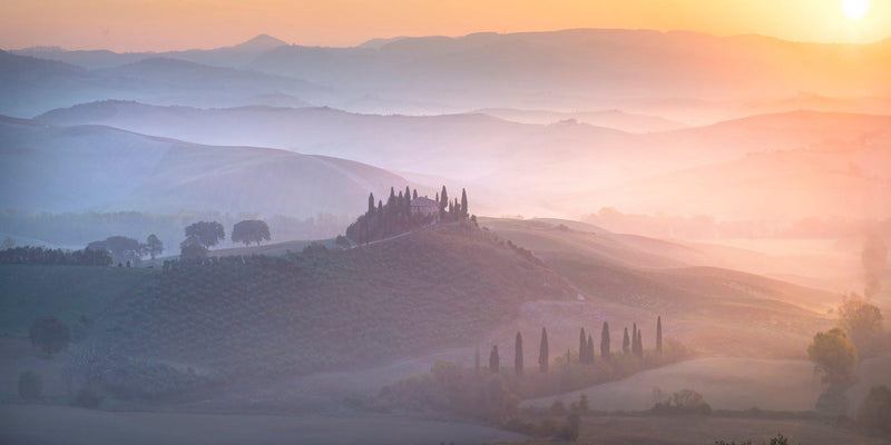 Photograph of vineyards and rolling hills in the fog at sunrise in Tuscany, Italy.