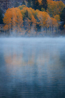 A misty autumn day in June Lake in California