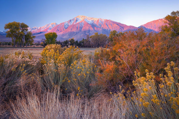 Owens Valley in the fall in Bishop California