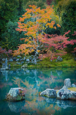 Fall color reflects in a Japanese garden in Kyoto Japan