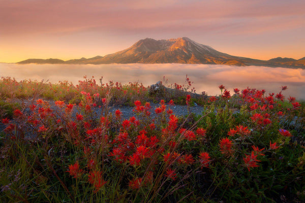 Mount Saint Helens at sunrise