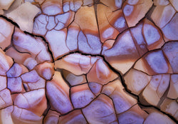 Dried cracked mud on the alvord desert. By Lijah Hanley.