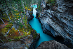 Athabasca canyon in Jasper national park. By Lijah Hanley.