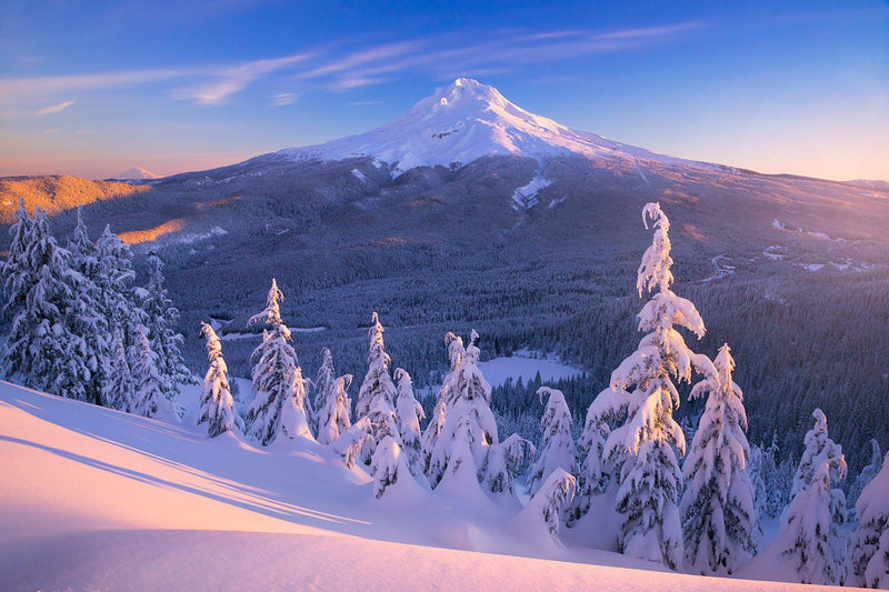 A snow covered Mt. Hood at sunrise