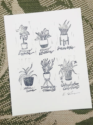 Houseplants - 11 x 14
