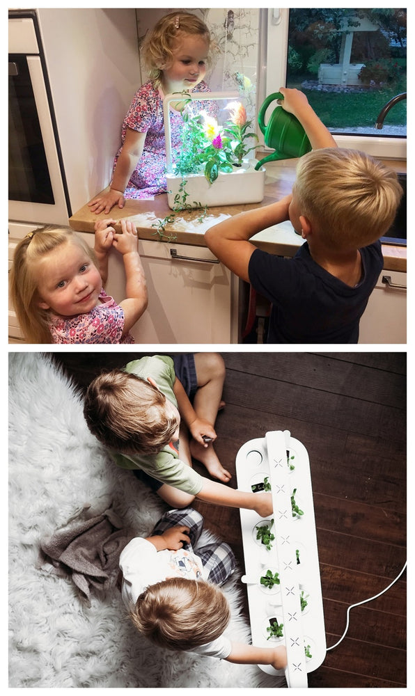 Growing with indoor smart gardens: 2 moms share their experiences