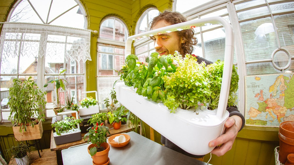 The Difference Between Click Grow And Hydroponic Systems