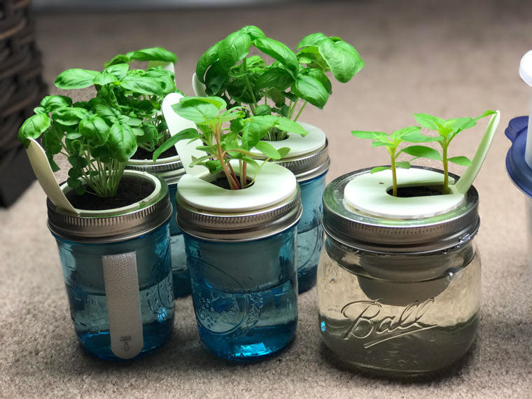 DIY Indoor Gardening Is On The Rise, And New Projects Are Emerging From All  Corners Of The Almighty Internet Like Mushrooms After Rain.