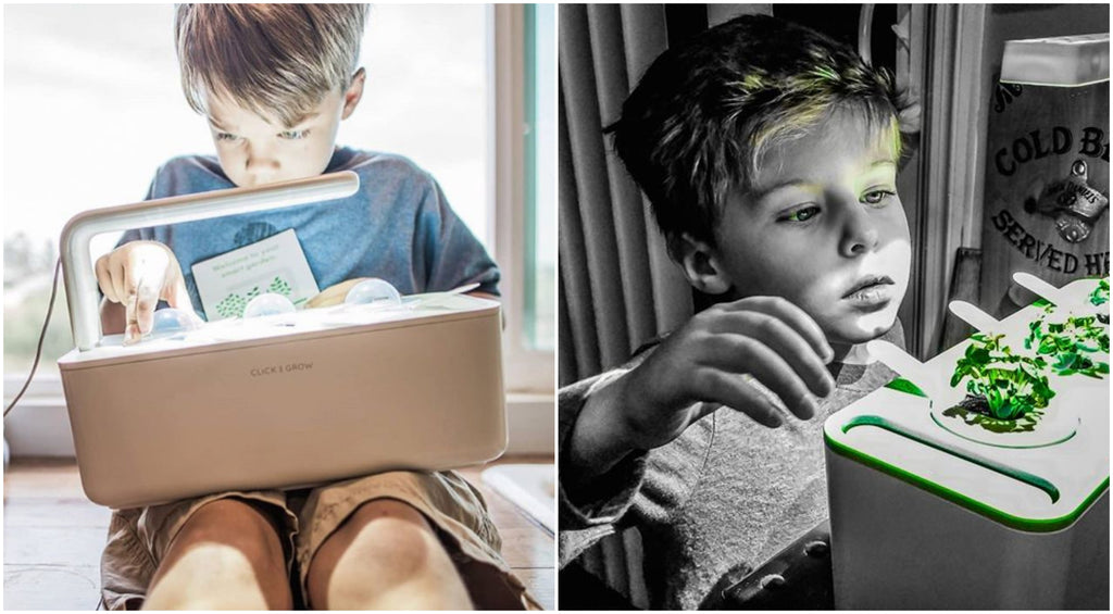 Kids excited by indoor gardens with grow lights