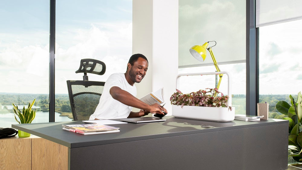 Man smiling, sitting at an office desk with a Click & Grow Smart Garden 9 on the table.