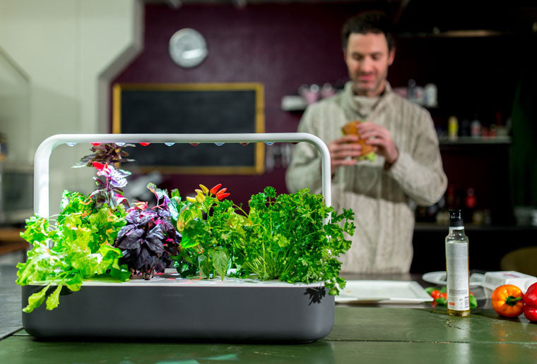 indoor gardening. It\u0027s A Well Know Fact That 40-50% Of The Fruits And Vegetables We Buy End Up In Trash. Little Less Known Is Food Waste Ends Creating Tons Indoor Gardening