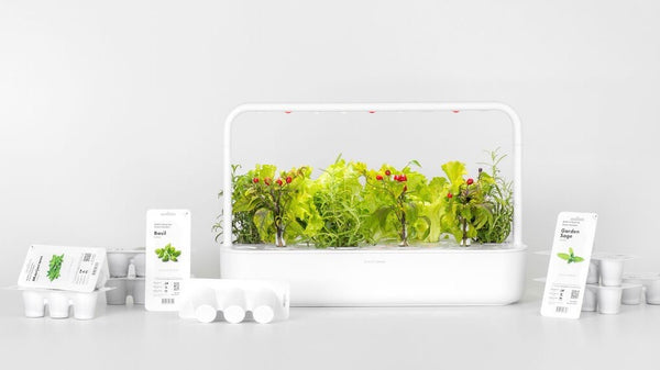 indoor garden, subscription plan